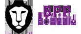 BPP Romania